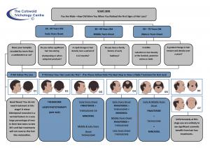 Male hair loss treatment diagram
